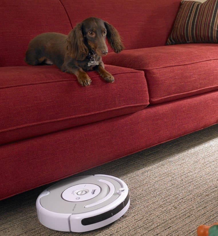 Hund på sofa med robotstøvsuger