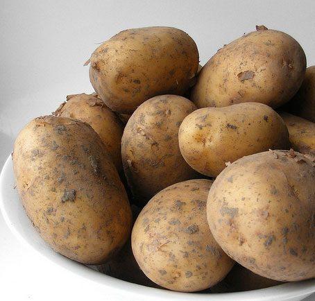Frieslander er en dejlig kartoffel