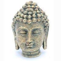 Buddha hovede