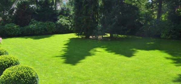 den perfekte græsplæne skal gødes 3-4 gange om året