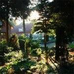 Holmstrup planteskole