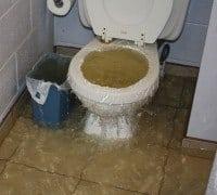 Opstigende vand fra toilet