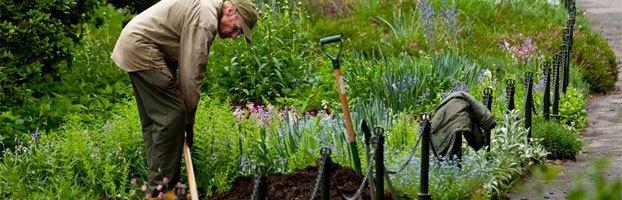 Pasning af have