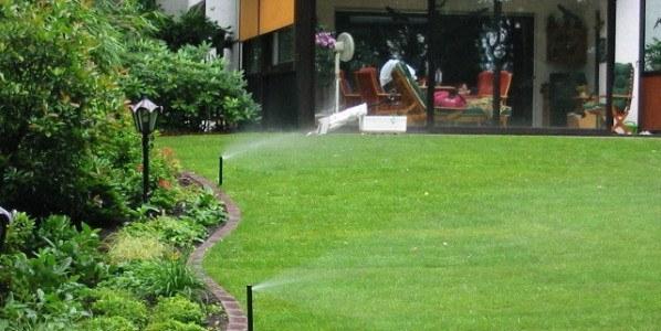 Vand græsplænen